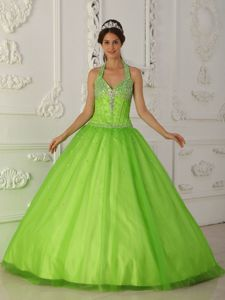Spring Green Halter A-line Organza Sweet 16 Dress with Appliques