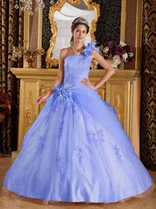 Voguish Lilac One Shoulder Appliques Quinceanera Dresses in Tulle