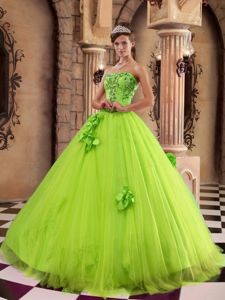 Spring Green Tulle Dress for Sweet 16 with Beading and Appliques