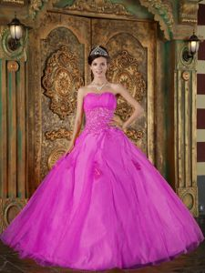 Inexpensive Organza Fuchsia Sweet Fifteen Dresses with Appliques