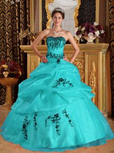 Turquoise Organza Sweetheart Dress for 15 with Appliques Hot Sale