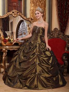 2014 Brown Ball Gown Beading Dress for Sweet 16 with Pick-ups