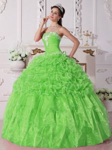 Spring Green Quinceanera Gowns with Appliques and Ruffles