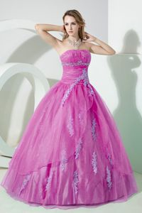Pretty Strapless Appliqued Ruched Violet Quinceanera Party Dress