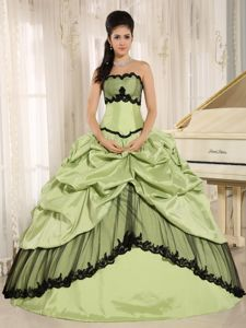 Apple Green Sweet Sixteen Dresses with Pick Ups and Appliques