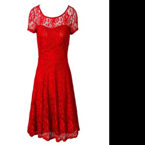 Admirable Scoop Short Sleeves Organza Tea Length Side Zipper Mother of the Bride Dress in Red with Lace