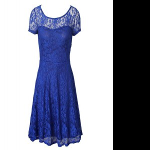 Pretty Organza Scoop Short Sleeves Side Zipper Lace Mother Dresses in Blue