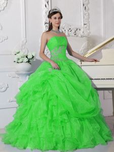 Appliqued and Ruffled Organza Quinceanera Dress in Spring Green