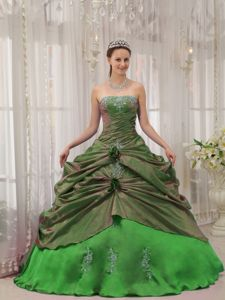 Green Ball Gown Strapless Special Fabric Appliques Quinceanera Dress