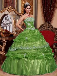 Ball Gown Appliqued Green Dress for Quinceaneras with Pick Ups
