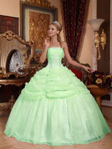 Strapless Ball Gown Apple Green Appliqued Quinceanera Gowns