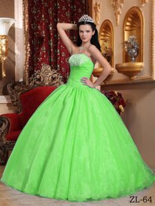 Fast Delivery Ball Gown Appliqued Spring Green Quinces Dress