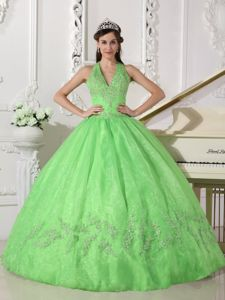 Spring Green Puffy Organza Quince Dresses with Haltered V-neck