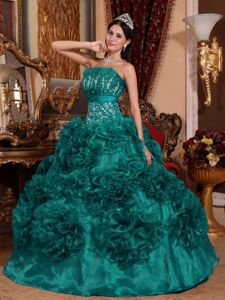 Turquoise Organza Quinceanera Dress with Appliques and Hand Made Flowers