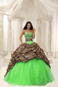 Multi-color Leopard Print Quinceanera Dress V-neck Beading