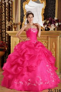 Appliques Ruching Pick-ups Hot Pink Quinceanera Dress Strapless