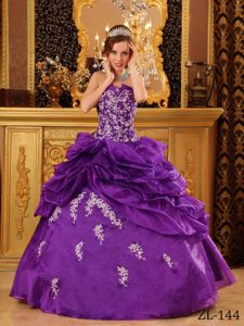 V-neck Embroidery Appliques Purple Ball Gown for Quinceanera