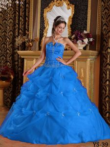 Embroidery Appliques Blue Quinceanera Dress for 16 Birthday