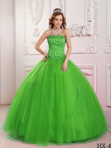 Strapless Floor Length Embroidery Quinceanera Gown Spring Green