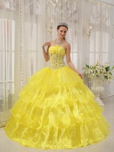 Appliqued Flowery Dresses for A Quinceanera in Bright Yellow