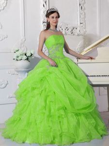 Appliqued and Ruffled Spring Green Sweet Sixteen Quinceanera Dress
