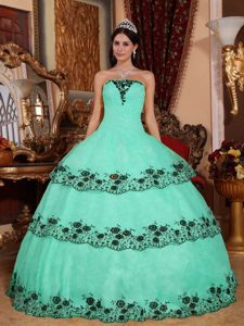 Apple Green Strapless Long Quinceanera Dress with Appliques 2013