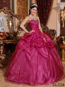 Fuchsia Organza Quinceanera Gown Dresses with Beading Pick ups