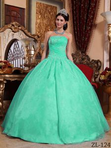 Apple Green Sweet Sixteen Quinceanera Dresses with Appliques
