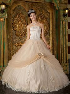 Champagne Quinceanera Gown by Tulle with Appliques and Flower