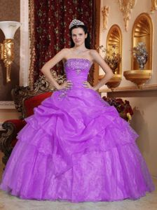 Purple Strapless Quinceanera Dress by Organza with Appliques and Beading