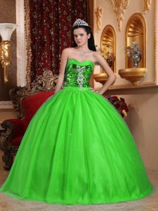 2014 Lime Green Quinceanera Dress with Bodice Made by Sequined Fabric