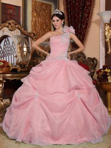 Pink One Shoulder Ball Gown Quinceanera Dresses with Appliques