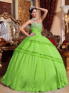 Spring Green Floor-length Sweet Sixteen Dresses with Appliques