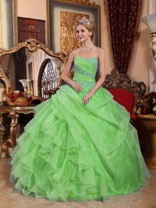 Spring Green Ball Gown Floor-length Quinceanera Dresses
