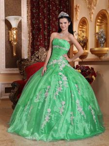 Apple Green Floor-length Sweet 15 Dresses with Appliques