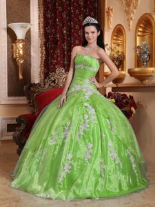 Charming Spring Green Ball Gown Quinceneara Dresses with Appliques
