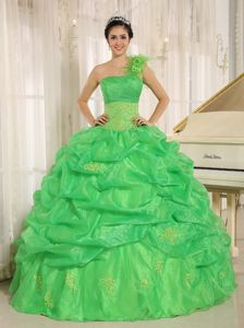 Spring Green One Shoulder Quinceneara Dresses with Pick-ups