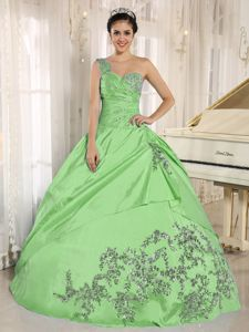 Spring Green One Shoulder Quinceneara Dresses with Appliques
