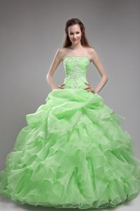 Beaded Spring Green Ruffled Organza Quinceanera Gown Dresses
