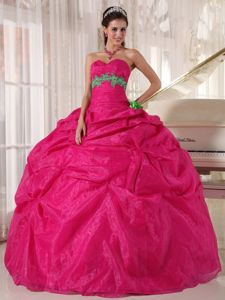 Hot Pink Quinceanera Dress with Pick-ups and Green Appliques