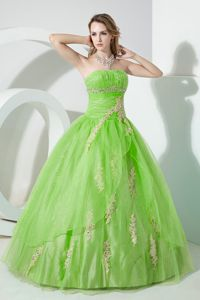 Spring Green Ruche Organza Quinceanera Dress with Appliques 2013