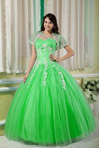 Spring Green Sweet 15 Dresses with Appliques and Beading in Tulle