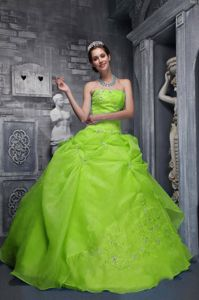Spring Green Strapless Organza Quinceanera Gowns with Embroidery