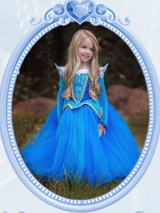 Fabulous Scoop Baby Blue Tulle Side Zipper Flower Girl Dress Long Sleeves Floor Length Beading and Embroidery