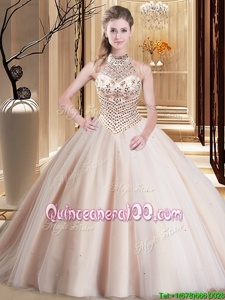 Sexy Pink Halter Top Lace Up Beading Vestidos de Quinceanera Brush Train Sleeveless