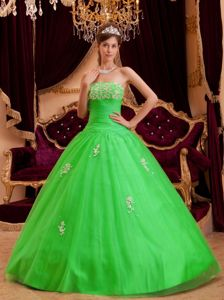 Spring Green A-line Strapless Appliques Dresses Of 15 Floor-length