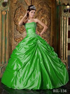Perfect Ball Gown Appliqued Spring Green Quinceanera Party Dresses