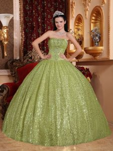 Fashionable Strapless Ball Gown Quinceanera Dresses with Sequins