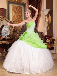 Spring Green and White Quinceanera Gown Dress with Handmade Flowers